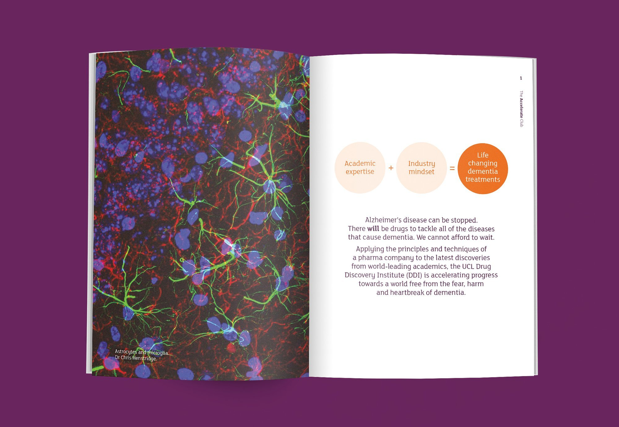Alzheimer's Accelerate Club Booklet Spread